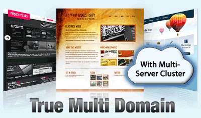 Multi Domain Web Hosting